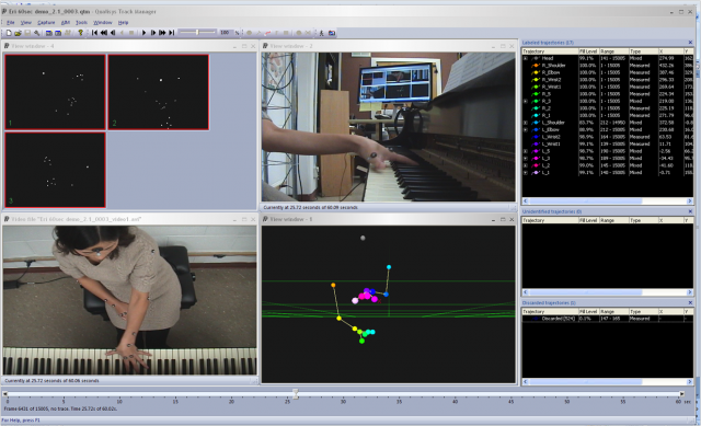 A screenshot of the motion-capture data.